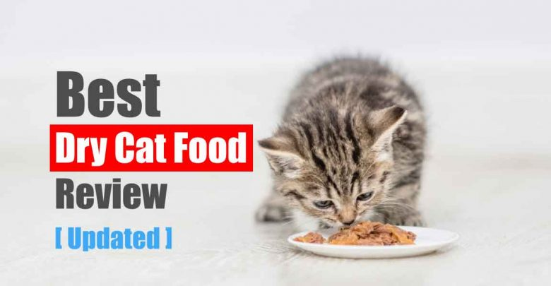 Best Dry Cat Food Review